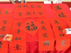 Chinese Calligraphy Demo