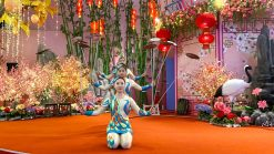 Chinese Acrobatic Show 1