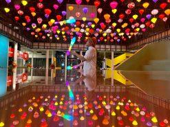 LED Juggler